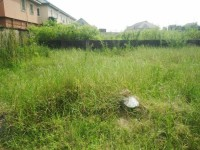 1001839044_1_644x461_a-full-plot-of-land-dry-fenced-round-with-gate-for-sale-lagos-island-east